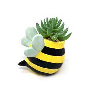 Bee Succulent Planter