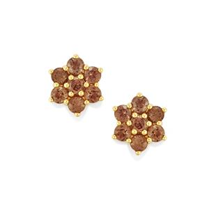 Bekily Color Change Garnet Earrings in 10k Gold 2.04cts