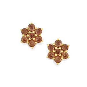 Bekily Colour Change Garnet Earrings in 9K Gold 2.04cts