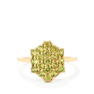 Ambanja Demantoid Garnet Ring in 9K Gold 1.45cts