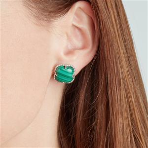 Malachite Earrings in Sterling Silver 20.28cts