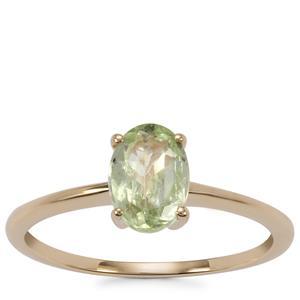 Merelani Mint Garnet Ring in 9K Gold 1.37cts