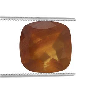 Burmese Amber Loose stone  1.4cts