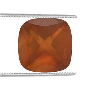 Burmese Amber  1.40cts