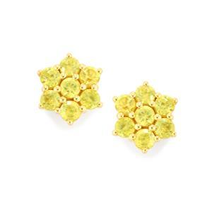 Ambilobe Sphene Earrings in 14K Gold 1.01cts