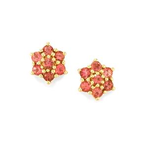 Natural Pink Tourmaline Earrings in 9K Gold 0.92cts