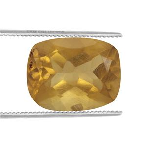Burmese Amber  1.35cts