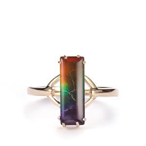 AA Ammolite Ring in 9K Gold (14 x 4.5mm)
