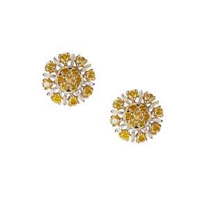 3/4ct White & Yellow Diamond 9K Gold Earrings