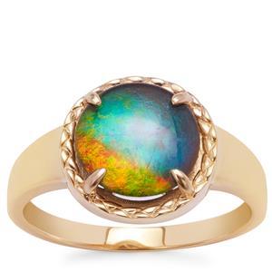 AA Ammolite Ring in 9K Gold (11mm)