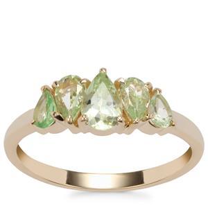 Merelani Mint Garnet Ring in 9K Gold 1.24cts