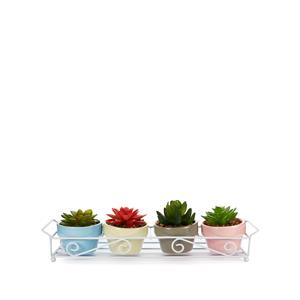 Four Faux Succulent in Marble-Style Jars