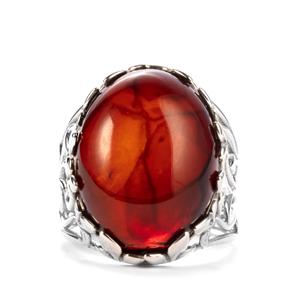 Baltic Cherry Amber Ring in Sterling Silver (20 x 15mm)