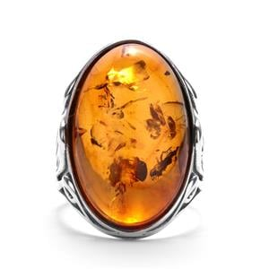 Baltic Cognac Amber Sterling Silver Ring (25 X 15mm)