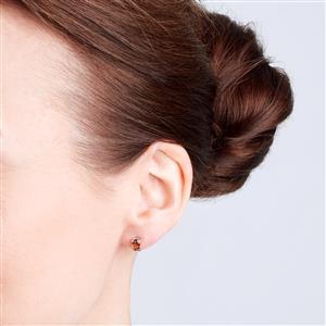 Cognac Zircon Earrings  in Sterling Silver 1.35cts
