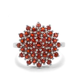 Anthill Garnet Ring in Sterling Silver 1.92cts