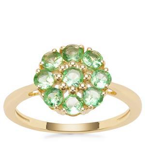Tsavorite Garnet Ring in 9K Gold 1.06cts