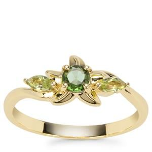Chrome Tourmaline Ring with Changbai Peridot in 9K Gold 0.42cts
