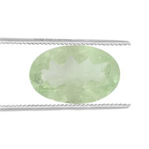 Merelani Mint Garnet GC loose stone  0.40ct
