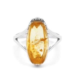 Baltic Champagne Amber Ring in Sterling Silver (15.50x8.50mm)