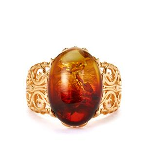 Baltic Ombre Amber (12x17mm) Gold Tone Sterling Silver Ring