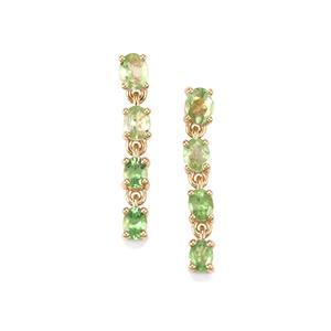 Merelani Mint Garnet Earrings in 9K Gold 1.94cts
