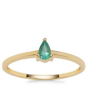 Zambian Emerald Ring in 9K Gold 0.18ct