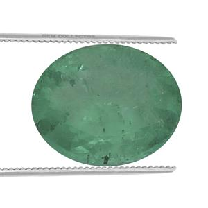 Colombian Emerald  0.22ct