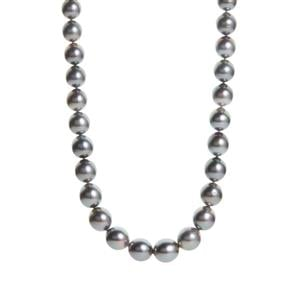 Tahitian Cultured Pearl Necklace  in Sterling Silver
