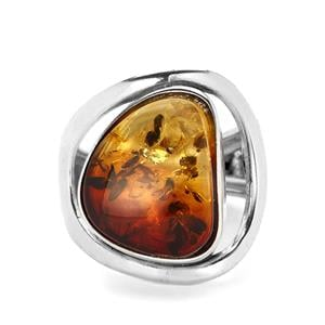 Baltic Ombre Amber Sterling Silver Ring (15 x 12.50mm)