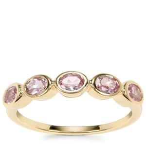 Andhra Pradesh Spinel Ring in 9K Gold 0.86ct