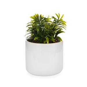Faux Succulent in White Ceramic Jar