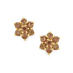 Bekily Colour Change Garnet Earrings  in 9K Gold 1.47cts