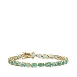 17.80ct Odisha Kyanite 9K Gold Tomas Rae Bracelet