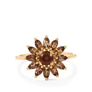 Bekily Color Change Garnet Ring  in 10k Gold 1.69cts