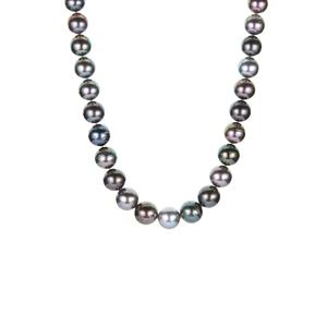 Tahitian Cultured Pearl Necklace  in Sterling Silver (11mm)