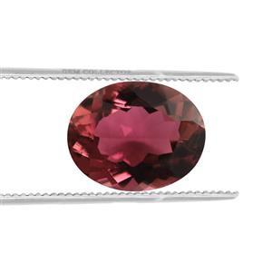 Congo Rubellite Loose stone  2.30cts