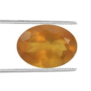 Burmese Amber  1.80cts