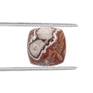 Roseta Jasper Loose stone  4.20cts