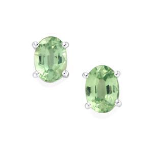 Odisha Kyanite Earrings in 9K White Gold 2.04cts
