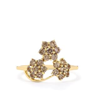 Bekily Colour Change Garnet Ring  in 9K Gold 0.87ct
