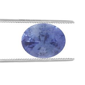 Ceylon Sapphire  0.25ct
