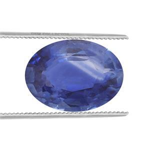 Ceylon Sapphire  0.31ct