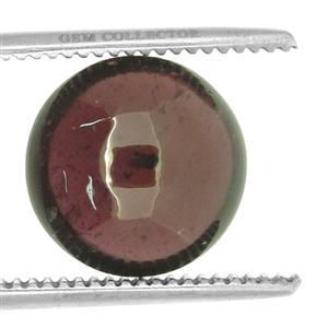 Rhodolite Garnet GC loose stone