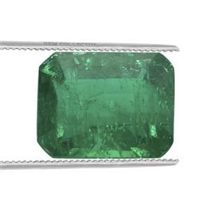 Emerald  0.20ct