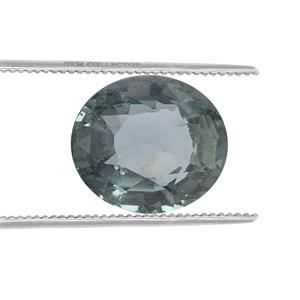 .95ct Nigerian Blue Sapphire (N)
