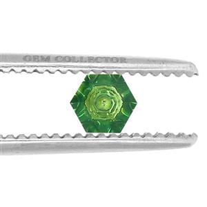 1.60ct Quasar Cut Fern Green Quartz (U)