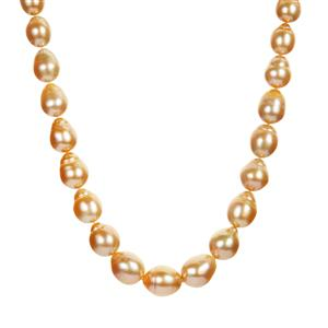 Golden South Sea Cultured Pearl Graduated Necklace in Sterling Silver