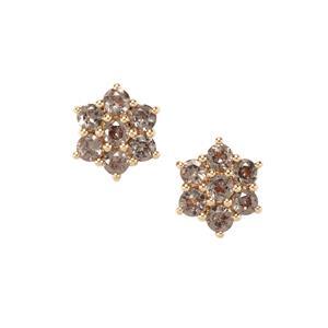 Bekily Colour Change Garnet Earrings in 9K Gold 1.12cts