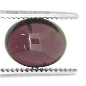3.60ct Rhodolite Garnet (N)